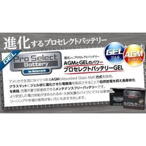 プロセレクトバッテリー Pro Select Battery オートバイ用バッテリー YAMAHA SEROW225W 型式4JG1から4 始動方式セル 適合年月93年-96年|webike02|03