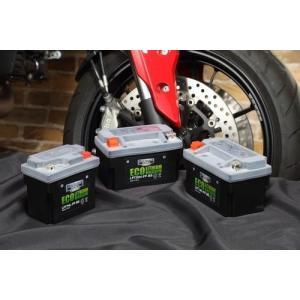 プロセレクトバッテリー オートバイ用12.8V エコリチウムイオンバッテリー その他|webike02|03