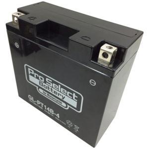プロセレクトバッテリー Pro Select Battery オートバイ用12Vバッテリー webike 02