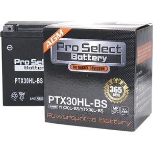 Tポイント10倍 プロセレクトバッテリー Pro Select Battery オートバイ用バッテリ...