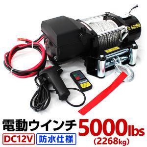 電動ウインチ 12V 電動ホイスト 2268kg / 5000LBS 電動 ウインチDC12V 電動 ホイスト