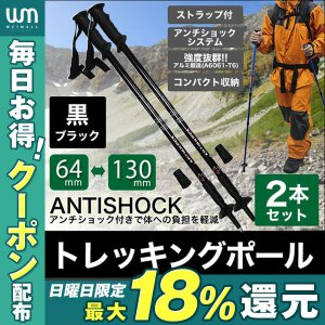 トレッキングポール 登山 2本セット I型 ステッキ ストッ...