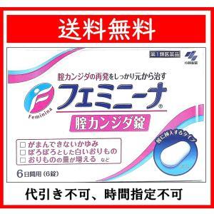 フェミニーナ膣カンジタ錠 6錠 送料無料 (第1類医薬品) wellhealth-drugstore
