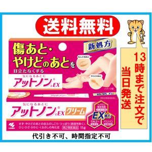 アットノンEXクリーム 15g 第2類医薬品
