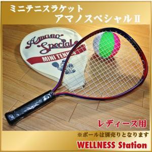 ミニテニス ラケット アマノスペシャル2 目指せ全国大会