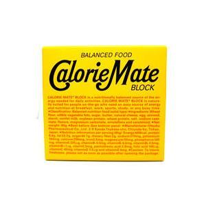 バランス栄養食 カロリーメイト ブロック チーズ味 (80g) ※軽減税率対象商品|wellness-web