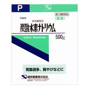 【第3類医薬品】健栄製薬 日本薬局方 炭酸水素ナトリウム (500g) wellness-web