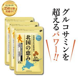 サプリメント プロテオグリカン 非変性 北国の恵み(93粒×...