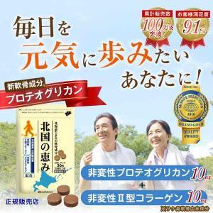 サプリメント プロテオグリカン 非変性 北国の恵み(30粒 ...