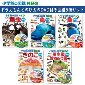 小学館の図鑑NEO DVDつき 昆虫・魚・鳥・きのこ・両生類はちゅう類 5冊セット 特典付き