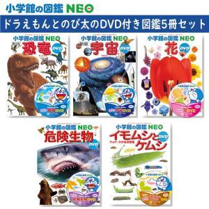 小学館の図鑑NEO DVDつき 恐竜・宇宙・花・危険生物・イモムシとケムシ 5冊セット 特典付き