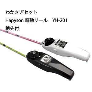 わかさぎセット 極技ワカサギ替え穂先 25cm HAPYSON 電動リールYH-201 電動セット