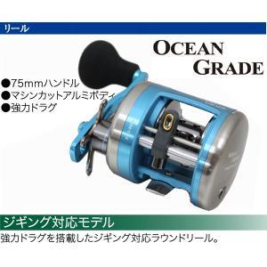 PRO TRUSTプロトラスト  OCEAN GRADEオーシャングレード 300  208735 ベイトリール 送料無料 westcoast