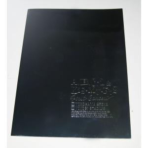 エビキス「A.B.C-Z&Kis-My-Ft2 First Concert」パンフレット [ 公式グッズ ](中古ランクB)|wetnodsedog