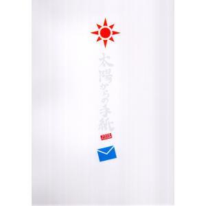 PLAYZONE2009 [ 太陽からの手紙 ] パンフレット[ 公式グッズ ](中古ランクA)|wetnodsedog