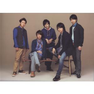 """嵐 [ 公式グッズ ] ARASHI Live Tour 2013""""LOVE""""クリアファイル"""