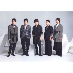 嵐 [ 公式グッズ ] ARASHI LIVE TOUR 2015 Japonism クリアファイル