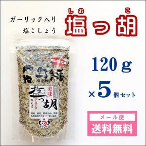 塩っ胡(しおっこ) 袋入り 120g 5個セット /塩工房 野次馬/クリックポスト発送 送料無料