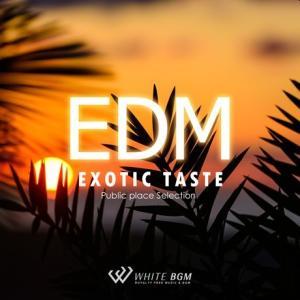 BGM CD EDM 著作権フリー 店内 音楽 エキゾチックテイストEDM(4099)