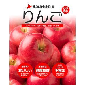 北海道余市産 りんご 3kg 訳あり品 品種 昂林 こうりん...