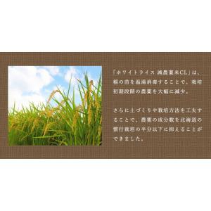【30年度産新米】 送料無料 北海道産 ホワイトライス減農薬米CL 10kg  無洗米・玄米・白米 放射能検査検査済|whitefood|03