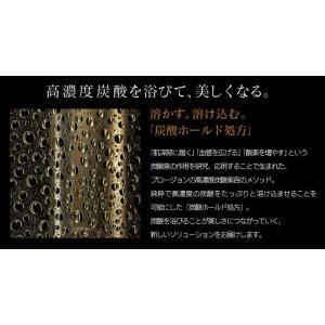 プロージョン MTG正規販売店  PLOSION 炭酸ミストハンディセット PL-HS1920B-W|wide02|03