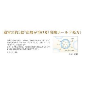 プロージョン MTG正規販売店  PLOSION 炭酸ミストハンディセット PL-HS1920B-W|wide02|06