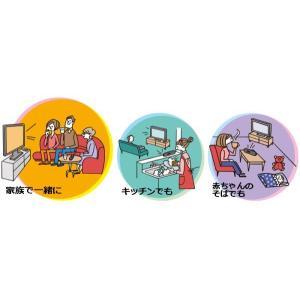 TDK 手元スピーカー テレビスピーカー Bluetooth ワイヤレス 卓上 リビング 日本 TDK Life on Record SP-TV24WA-BK|wide02|04