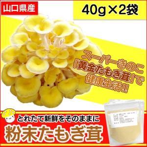粉末 黄金たもぎ茸 たもぎだけ タモギダケ 40g×2袋 健康食品