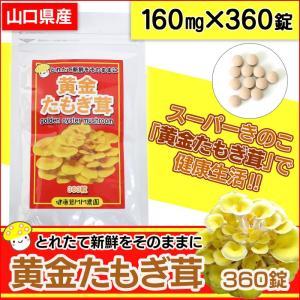 錠剤 黄金たもぎ茸 たもぎだけ タモギダケ 160mg×360錠 健康食品 wide02
