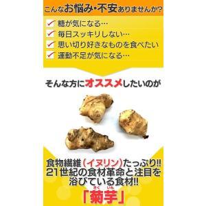 菊芋 菊芋茶 キクイモ きくいも 75g 2.5g×30包 サンテライズ 菊芋 健康茶|wide02|02