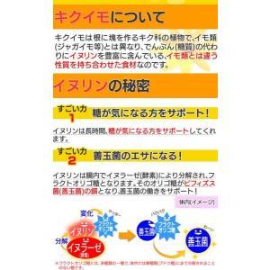 菊芋 菊芋茶 キクイモ きくいも 75g 2.5g×30包 サンテライズ 菊芋 健康茶|wide02|03