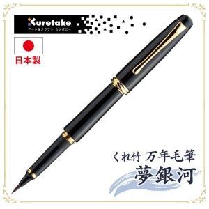 くれ竹 万年毛筆 夢銀河 DAY140-11 黒|wide02