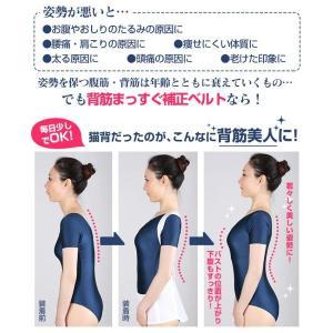 背筋補正ベルト 2枚セット 男女兼用 整骨院と共同開発 背筋まっすぐ 姿勢補正 背筋補正|wide02|02