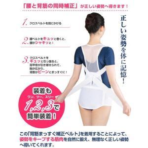 背筋補正ベルト 2枚セット 男女兼用 整骨院と共同開発 背筋まっすぐ 姿勢補正 背筋補正|wide02|03