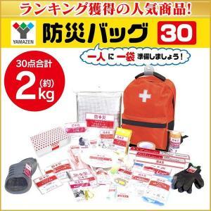 防災グッズ セット リュック 家族 会社 30点 リュックサック 2kg 軽量 防災バッグ YBG-30R 77459|wide02