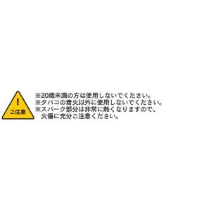 usb充電式ライター プラズマ ライター プラズマ放電 おしゃれ オイル ガス 不要 エコ アークライター ARC|wide|06