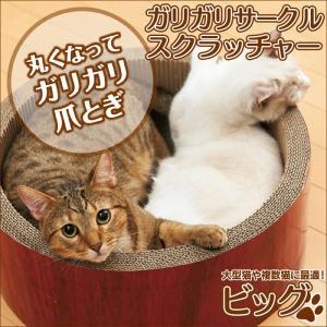 猫の爪とぎ  爪研ぎ ネコ 大きいサイズ ガリガリサークル スクラッチャー ビッグ ガリガリウォール シリーズ 猫 ネコ ねこ 爪みがき 爪削り|wide