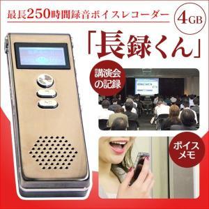 250時間 録音 ボイスレコーダー 長録くん 録音機 小型 録音機器 WK-I01|wide