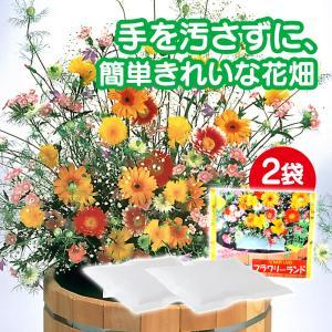 母の日 ギフト 遅れてごめんね 2020 花の種 ブレンドパック フラワリーランド 2パック 秋蒔き 春蒔き 栽培 種まき 簡単 ガーデニング 庭造り 珍しい花の種|wide