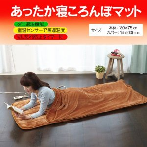 電気毛布 寝袋 ホットマット 洗える 洗濯可能 丸洗い可 日本製 国産 秋冬 ダニ退治機能 切り忘れタイマー 室温センサー あったか寝ころんぼマット|wide