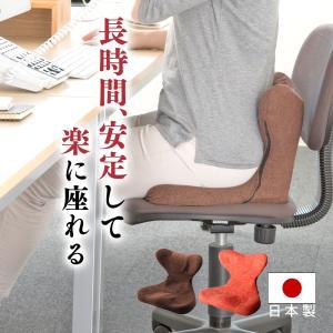 座椅子 腰痛 馬具マットプレミアムEX proidea プロイデア 姿勢補正 姿勢補整 背筋 尾骨ポケット イーエックス|wide