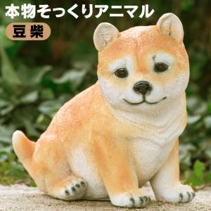 本物そっくりアニマル 豆柴【新聞掲載】|wide