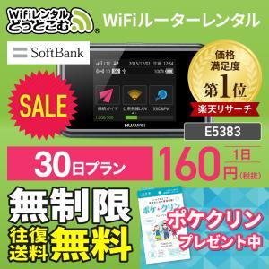 送料無料docomo ドコモ E5383 Pocket WiFi 30日 1ヶ月 ルーター レンタル 5GB  ルーター wi−fi レンタル ルーター ポケットwifi wi-fi ワイファイレンタル