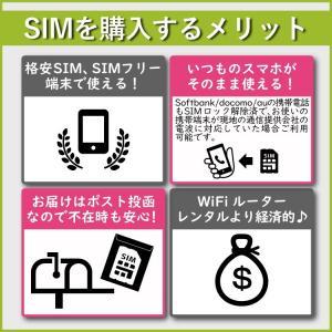 ヨーロッパ SIMカード ヨーロッパ周遊 プリ...の詳細画像4