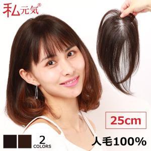 人毛100% 前髪ウィッグ 部分ウィッグ かつら ポイントウィッグ 私元気 BHAB710|wigshop