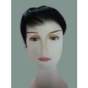 ポイントウィッグ ・ 私元気 人気な部分ウィッグ 100%人毛 オーダーメイド   (bw3)|wigshop