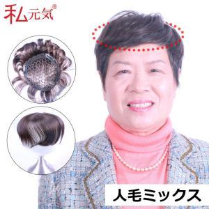 部分ウィッグ ポイントウィッグ 部分かつら IB002|wigshop