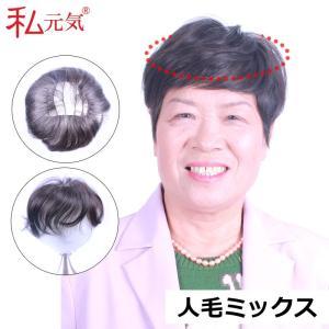 ウィッグ 部分 ・ 送料無料! 部分ウィッグ ポイントウィッグ 部分かつら   IB008|wigshop