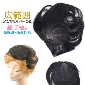 ウィッグ 総手植え ヘアピース ミセス 部分ウィッグ かつら 送料無料 広範囲カバー 白髪隠し tk2|wigwigrunes